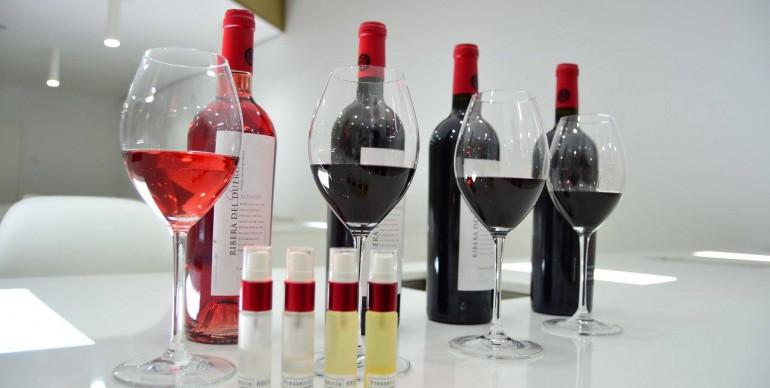 Marketing Olfativo Vino. Espíritu Ribera